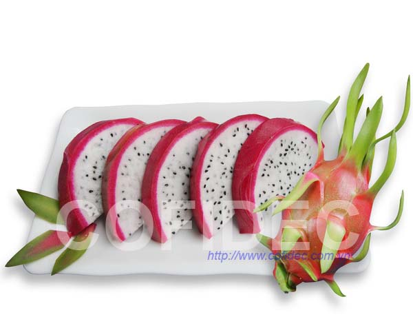 Dragon fruit Coin cut